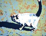 Cat  Left