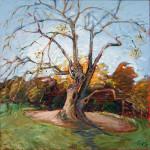 Rowe  Arboreum