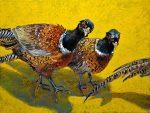oil on linen of three pheasants